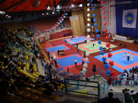Начало кубка по таэквон-до 2008, день 2